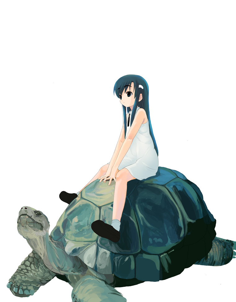 1girl black_hair dress expressionless hair_ornament hairclip houmitsu long_hair necktie original riding shoes short_dress sidelocks simple_background size_difference sleeveless sleeveless_dress socks solo tortoise turtle v_arms very_long_hair