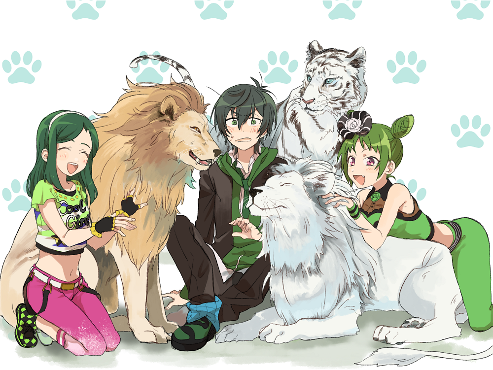 1boy 2girls animal arm_support belt blush capri_pants color_connection crop_top double_bun fang fingerless_gloves gloves hairband hood hoodie jacket king_of_prism_by_prettyrhythm kougami_taiga leaning lion morizono_wakana multiple_girls navel open_clothes open_jacket pants patterned_background paw_print pretty_rhythm pretty_rhythm_dear_my_future pretty_rhythm_rainbow_live sakuragi_mochi shi_yoon shoes sitting sneakers tiger white_tiger