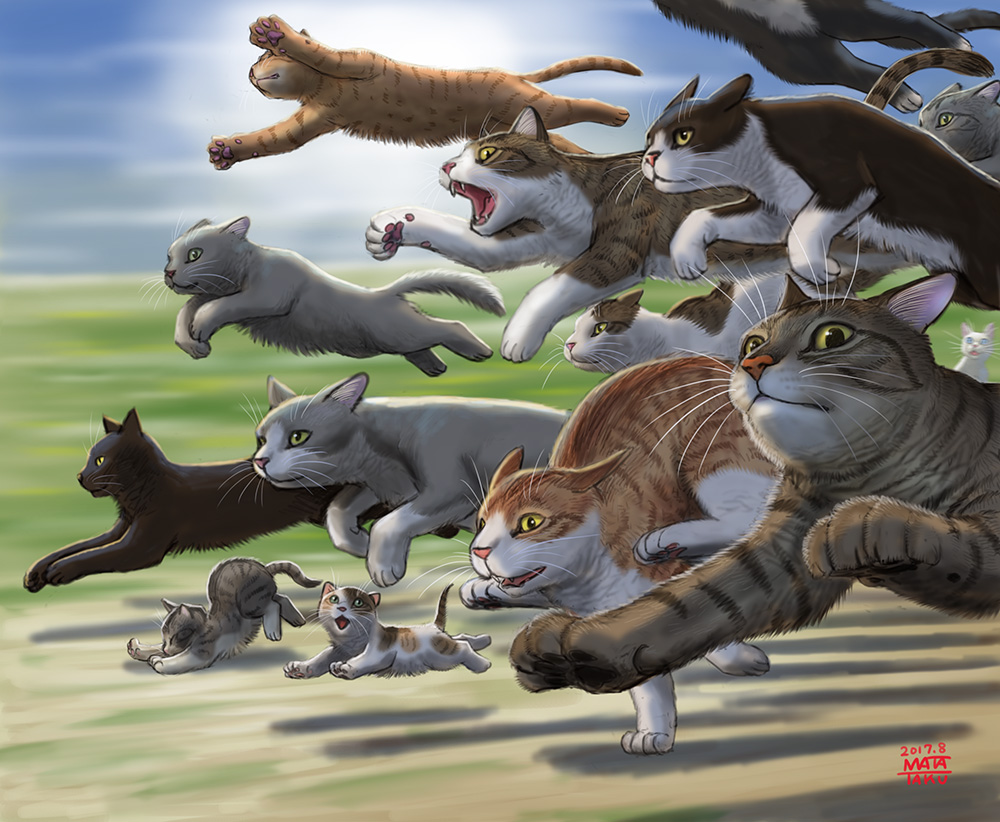 cat commentary_request jumping kitten matataku no_humans original running too_many too_many_cats
