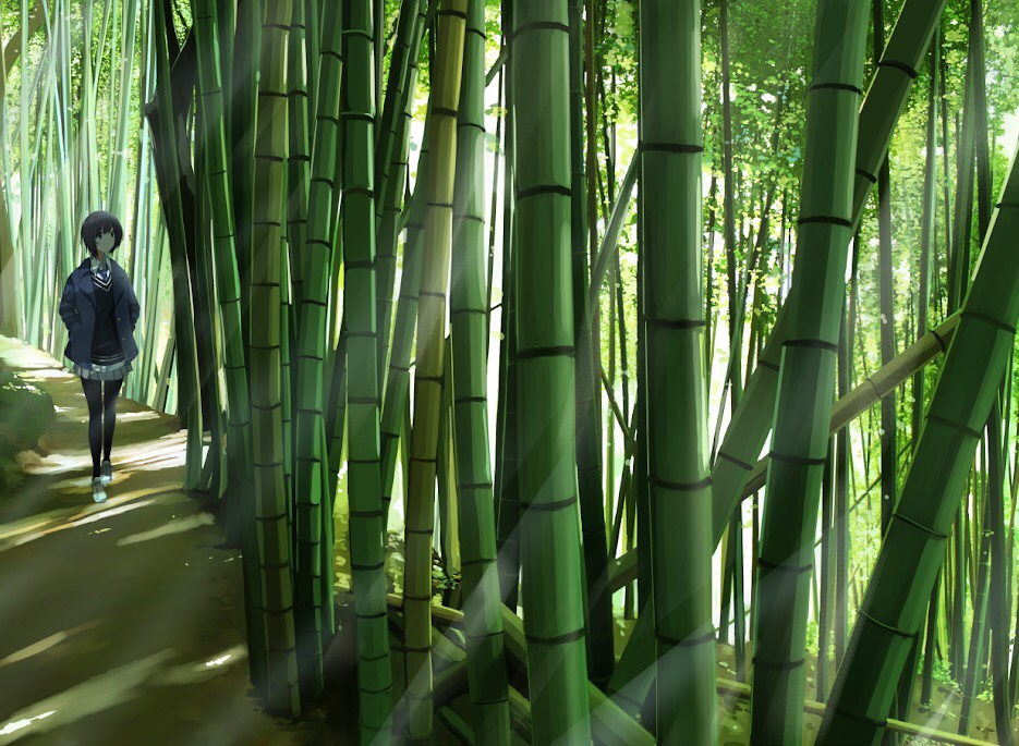 1girl bamboo bamboo_forest black_hair black_legwear closed_mouth day forest hands_in_pockets looking_away nature original outdoors sakeharasu scenery school_uniform serafuku short_hair solo thigh-highs
