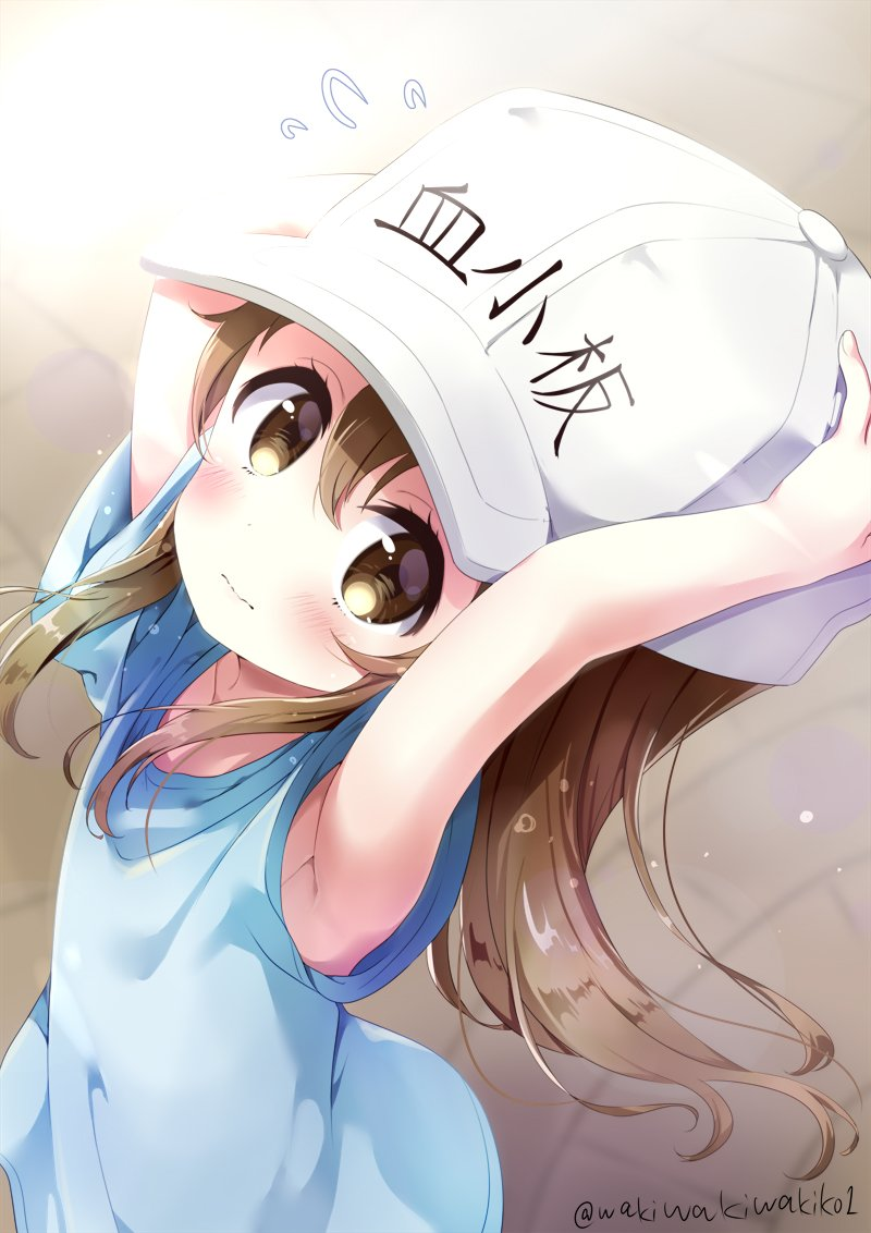 1girl armpits arms_up bangs blue_shirt blurry blurry_background blush brown_eyes brown_hair character_name closed_mouth clothes_writing depth_of_field flat_cap flying_sweatdrops hair_between_eyes hands_on_headwear hat hataraku_saibou looking_at_viewer neki_(wakiko) platelet_(hataraku_saibou) shirt short_hair solo twitter_username wavy_mouth white_hat