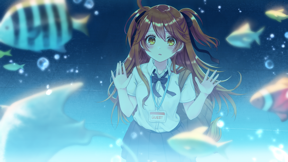 1girl against_glass animal bangs black_bow black_skirt blurry blurry_foreground blush bow brown_eyes brown_hair clownfish collared_shirt commentary_request copyright_request depth_of_field dress_shirt eyebrows_visible_through_hair fish hair_between_eyes hair_bow hands_up kashiwabara_en long_hair official_art parted_lips pleated_skirt shirt short_sleeves skirt solo two_side_up very_long_hair virtual_youtuber water white_shirt