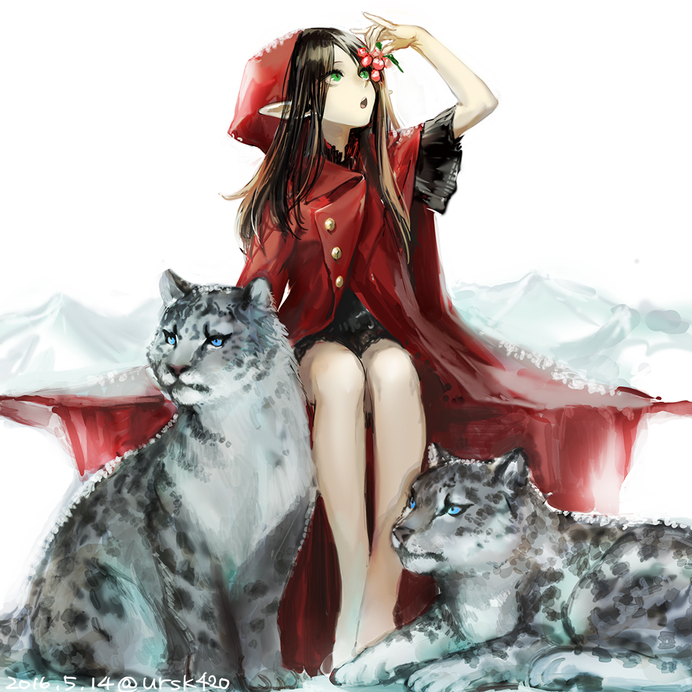 1girl bangs bare_legs blue_eyes brown_hair buttons dated flat_chest green_eyes holding hood hoodie long_hair looking_up open_mouth original parted_bangs pointy_ears short_sleeves signature simple_background sitting snow snow_leopard trench_coat uraki_(tetsu420) white_background