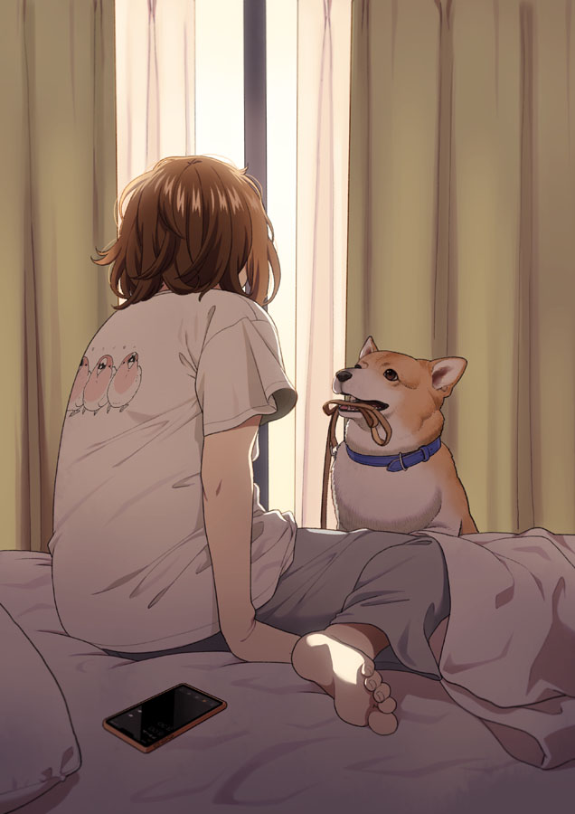1girl arm_support blue_collar brown_hair cellphone collar curtains dog dog_collar from_behind grey_pants leash mattaku_mousuke mouth_hold on_bed original pants phone pillow shirt short_hair sitting sitting_on_bed smartphone solo t-shirt welsh_corgi white_shirt