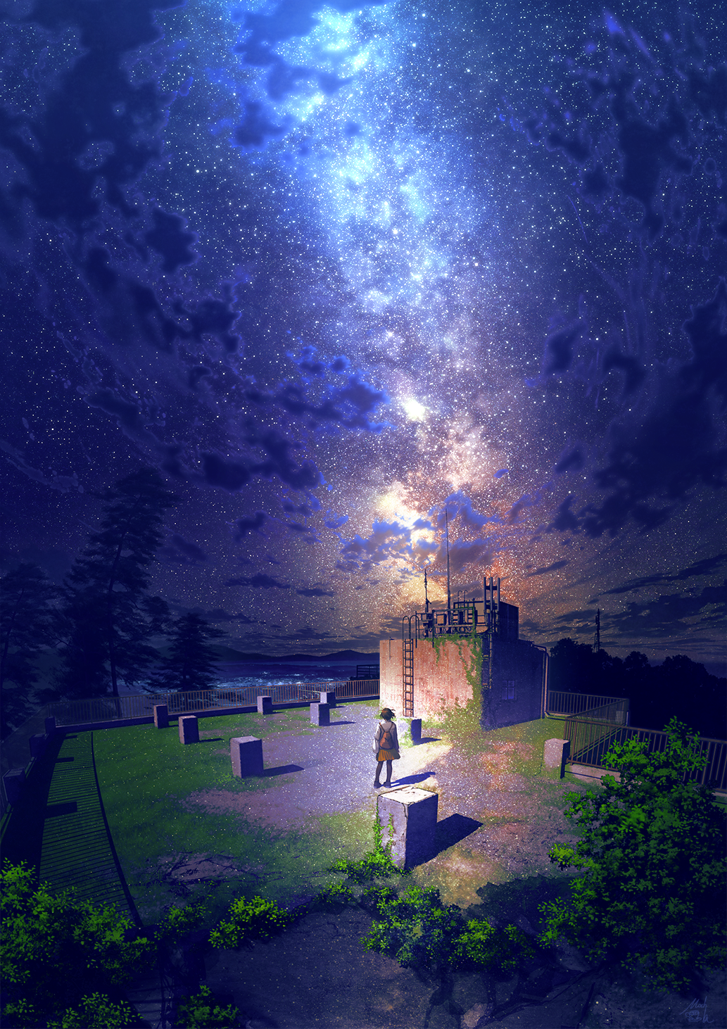 1girl backpack bag black_hair black_legwear clouds commentary_request facing_away from_behind highres jacket ladder mocha_(cotton) moss night night_sky orange_skirt original overgrown pantyhose plant pleated_skirt railing revision rooftop scenery skirt sky solo standing star_(sky) starry_sky tree white_jacket wide_shot
