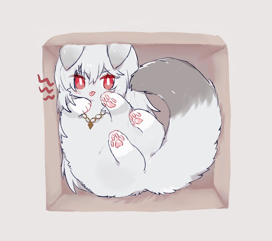 1girl ahoge animal animalization arknights box cardboard_box cat fluffy grey_background grey_fur in_box in_container jewelry lying necklace no_humans on_back paws simple_background sitting smile solo specter_(arknights) symbol_commentary tongue tongue_out zhu_mianzi
