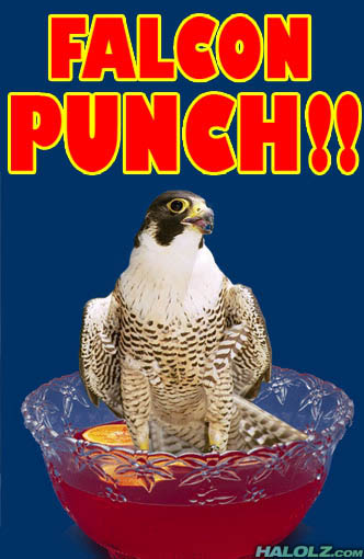 f-zero falcon falcon_punch literal_sense_of_the_word meme punch what