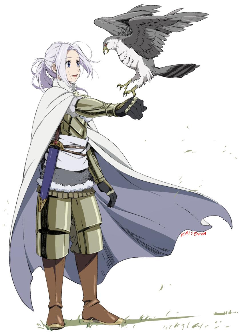 1boy absurdres armor arslan arslan_senki bird blue_eyes cape highres kaisen long_hair official_style white_hair