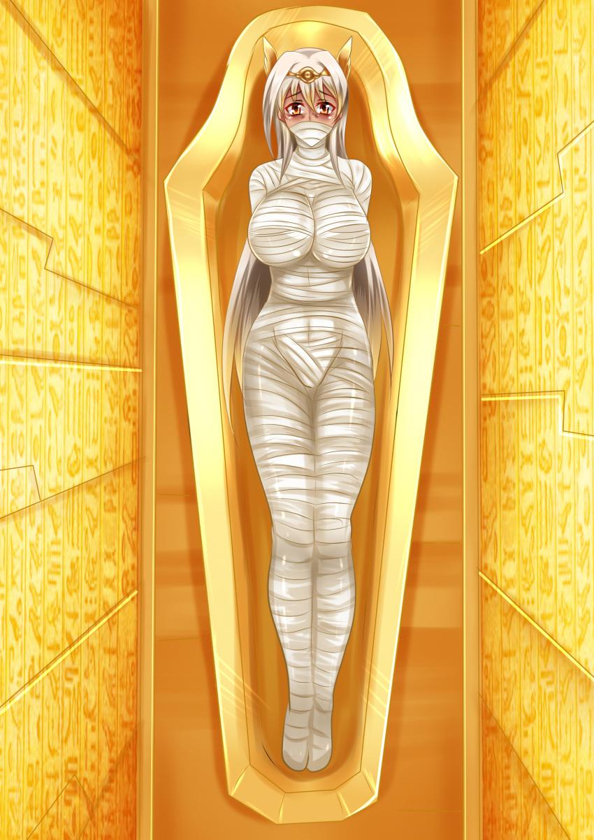 Mummy bondage