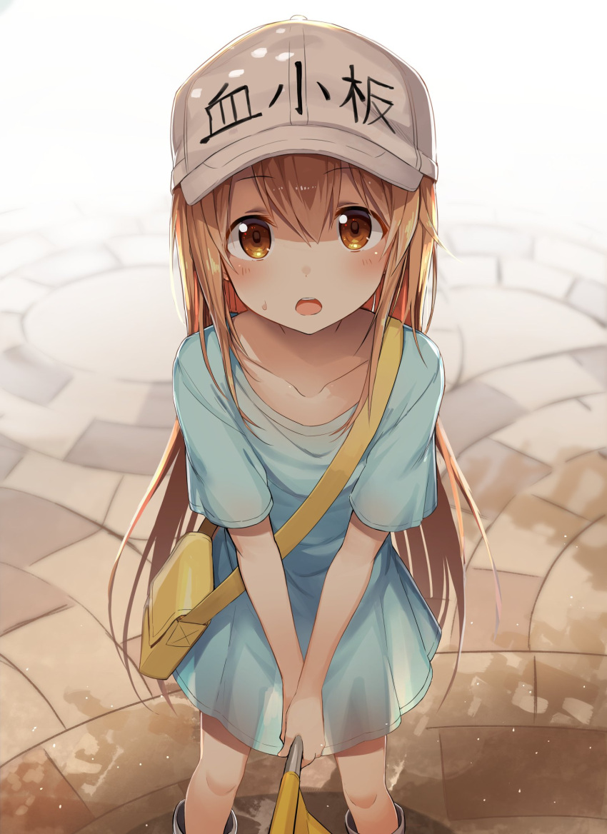 1girl bag bangs blue_shirt blush brown_eyes brown_hair collarbone eyebrows_visible_through_hair flag flat_cap greatmosu hair_between_eyes hat hataraku_saibou highres long_hair looking_at_viewer open_mouth platelet_(hataraku_saibou) shirt short_sleeves solo white_hat