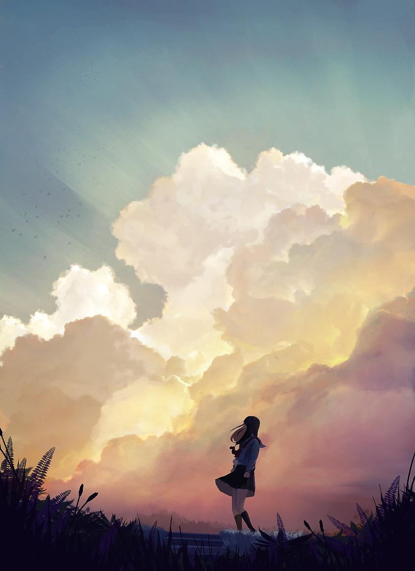 1girl absurdres bird black_hair clouds evening highres kneehighs looking_up neckerchief original outdoors pleated_skirt sailor_collar scenery school_uniform serafuku skirt sky solo sonna_watashi stairs wind