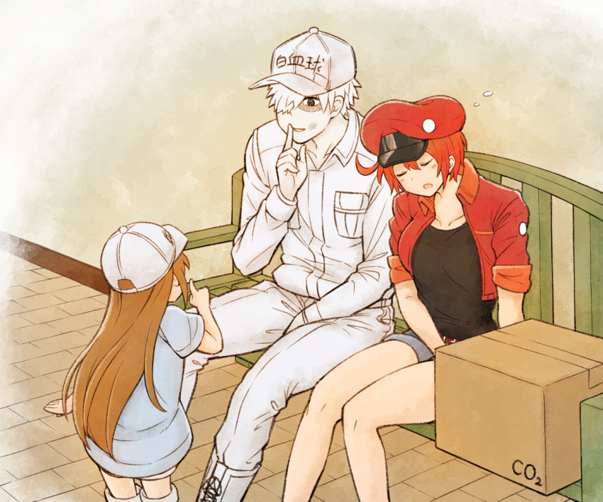 1boy 2girls ae-3803 ahoge baseball_cap bench box breast_pocket brown_hair closed_eyes clothes_writing cropped_jacket finger_to_mouth from_behind hair_over_one_eye hat hataraku_saibou long_hair multiple_girls otonari platelet_(hataraku_saibou) pocket red_blood_cell_(hataraku_saibou) redhead shorts shushing sitting sleeping u-1146 white_blood_cell_(hataraku_saibou) white_hair white_skin