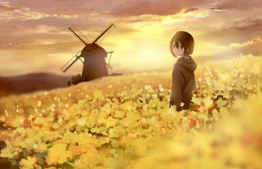 1girl backlighting blurry blurry_foreground brown_eyes brown_hair clouds cloudy_sky commentary_request depth_of_field field flower flower_field landscape looking_at_viewer looking_back original rapeseed_blossoms sakeharasu scenery short_hair sky solo standing sunset wide_shot windmill yellow_theme
