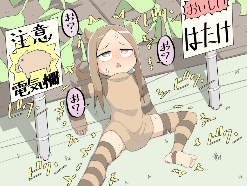 1girl animal_ears bad_id bad_pixiv_id barefoot blush boar boar_ears brown_eyes brown_hair electric_fence electricity original outdoors personification plant salpin sitting solo striped striped_legwear sweat thigh-highs translated