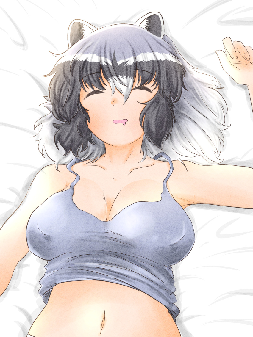 1girl absurdres animal_ears armpits bangs bare_arms bare_shoulders black_hair breasts breasts_apart camisole closed_eyes collarbone common_raccoon_(kemono_friends) drooling eyebrows_visible_through_hair from_above grey_hair hair_between_eyes hand_up highres huge_filesize kemono_friends lying medium_breasts medium_hair midriff_peek multicolored_hair navel ngetyan on_back open_mouth raccoon_ears sleeping smile solo stomach underwear underwear_only upper_body white_hair
