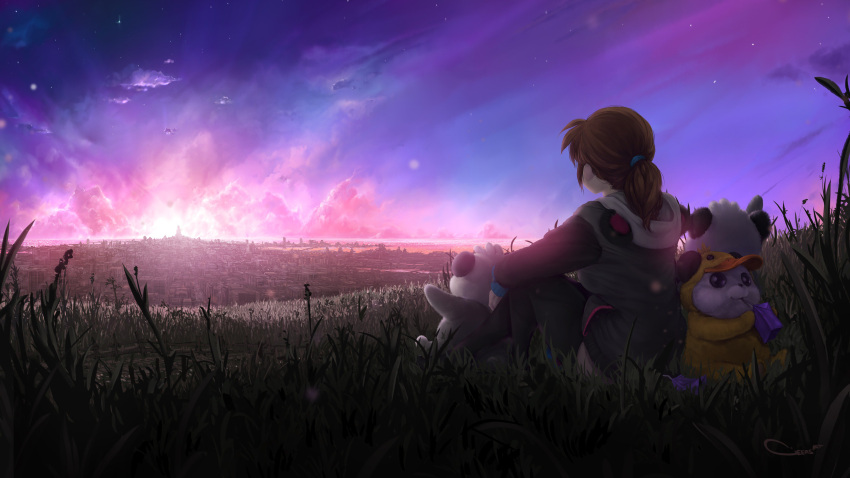 1girl 3others absurdres black_legwear borrowed_character brown_hair city cityscape clouds cloudy_sky commentary darren_geers duck_hood english_commentary facing_away highres hood hood_down horizon low_ponytail medium_hair multiple_others night night_sky original outdoors panda panda_hood sitting sky star_(sky) starry_sky sunset thigh-highs