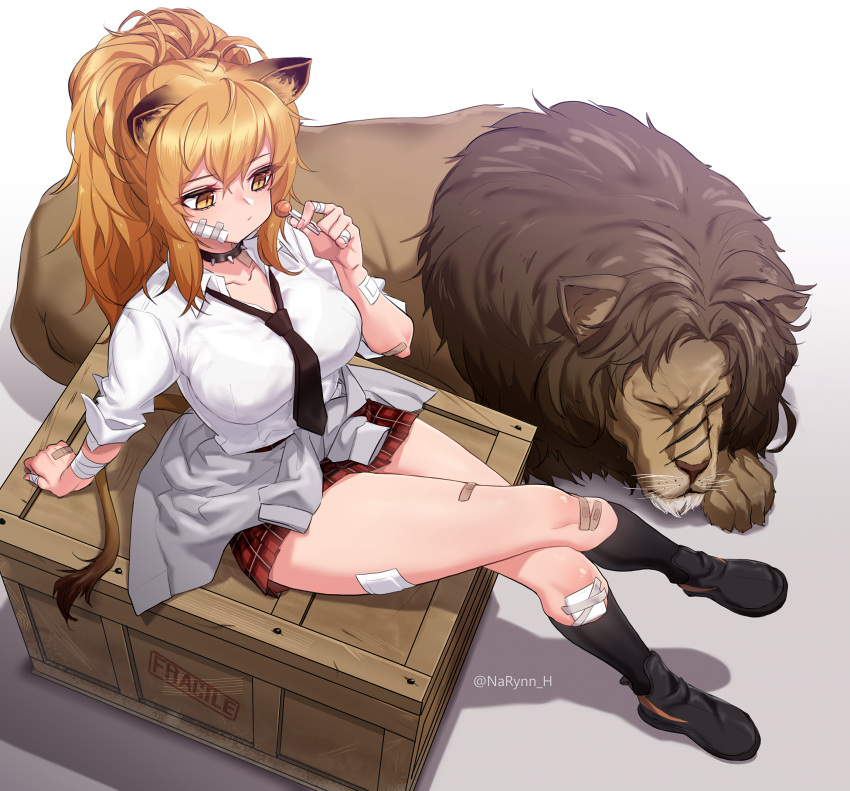 1girl animal animal_ears arknights arm_support bandages bandaid_on_cheek black_footwear black_legwear blonde_hair breasts brown_eyes clothes_around_waist collar collarbone collared_shirt crate crossed_legs dress_shirt from_above highres holding_lollipop jacket_around_waist kneehighs large_breasts lion lion_ears long_hair miniskirt narynn necktie plaid plaid_skirt pleated_skirt ponytail red_skirt shirt shoes siege_(arknights) sitting skirt solo thighs white_shirt