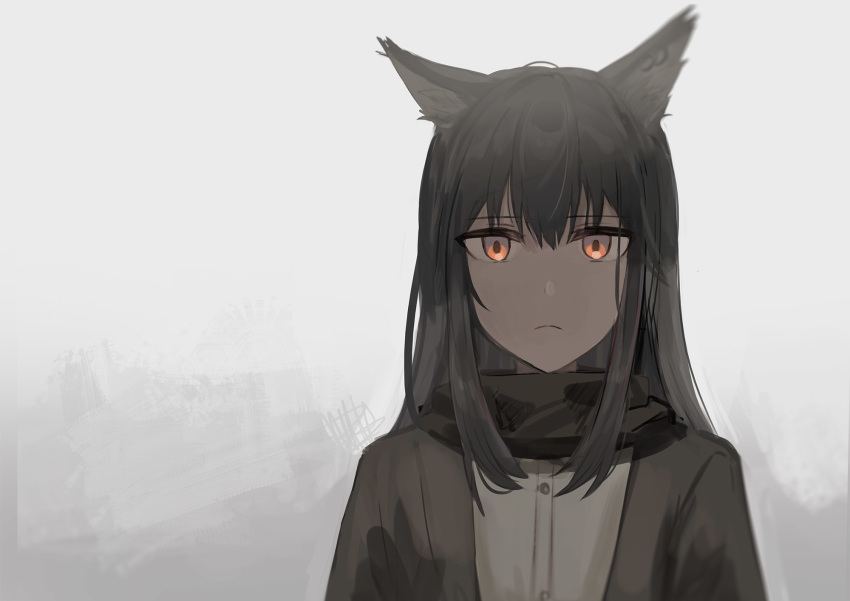 1girl animal_ear_fluff animal_ears arknights bangs black_hair black_jacket black_scarf brown_eyes chihuri closed_mouth dress_shirt eyebrows_visible_through_hair grey_background hair_between_eyes highres jacket light_frown open_clothes open_jacket scarf shirt solo texas_(arknights) upper_body white_shirt