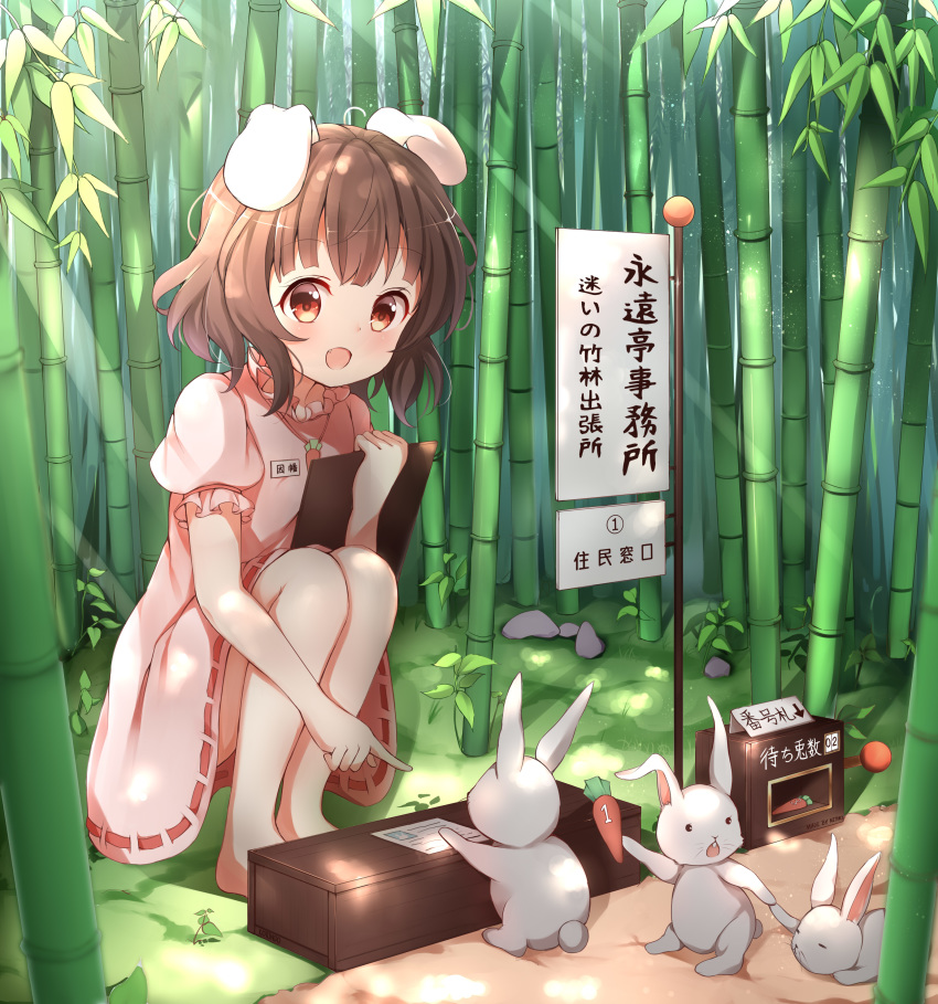 1girl :d absurdres animal animal_ears bamboo bamboo_forest barefoot blush brown_eyes brown_hair carrot carrot_necklace clipboard commentary_request day dress forest highres holding inaba_tewi nature open_mouth outdoors pink_dress pointing puffy_short_sleeves puffy_sleeves rabbit rabbit_ears ribbon-trimmed_dress short_hair short_sleeves sign smile solo squatting stick_jitb touhou translation_request