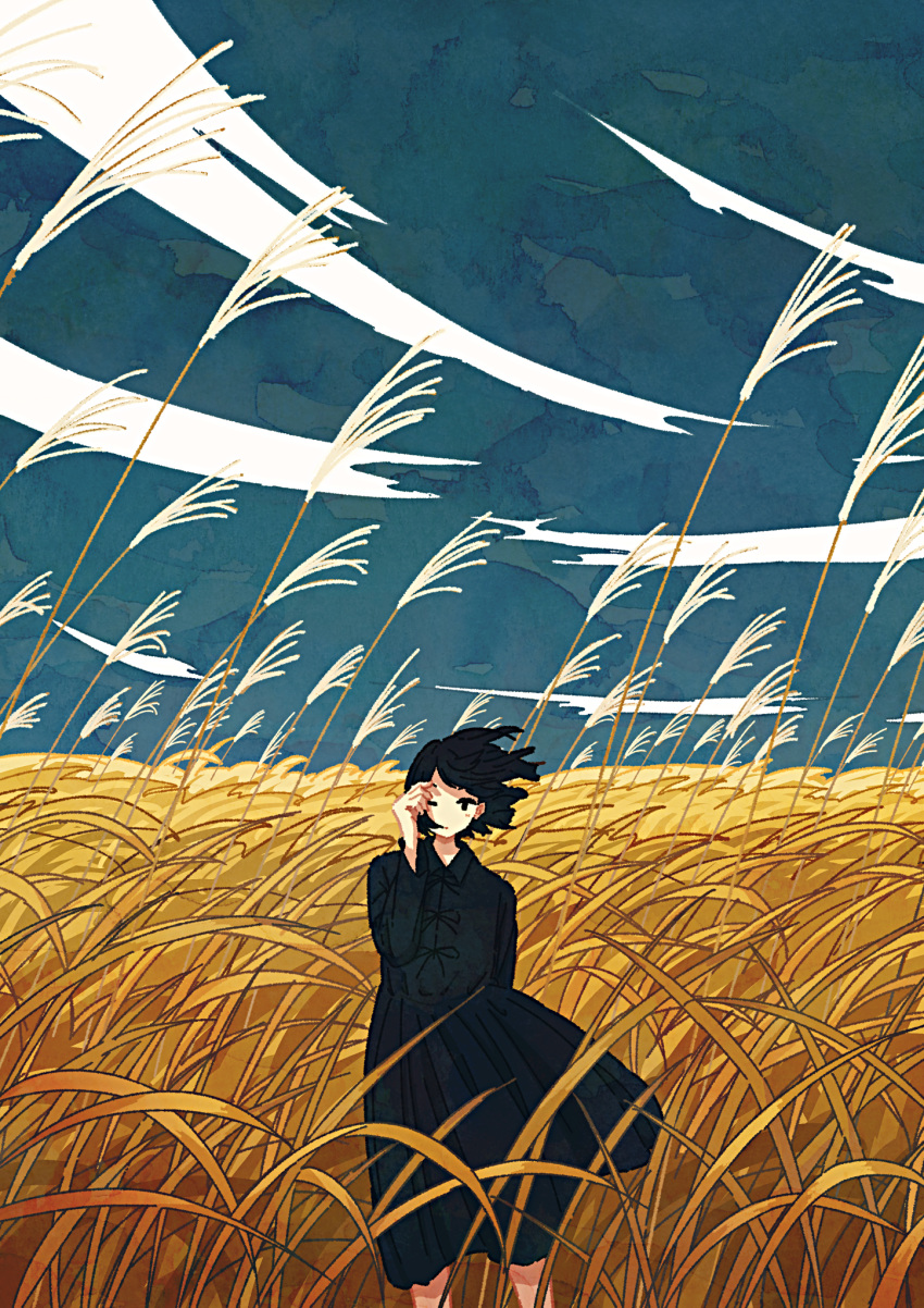 1girl autumn black_dress black_hair blue_sky dress feet_out_of_frame grass highres izuminoizm long_sleeves medium_hair nature no_nose one_eye_closed original outdoors sky solo wind