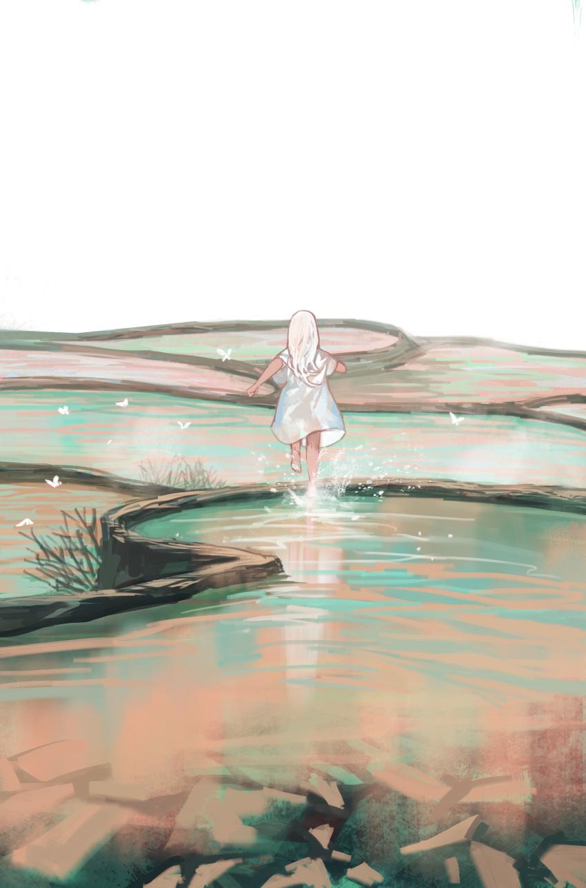 1girl absurdres animal back bug butterfly cliff dress highres insect jun_(5455454541) long_hair original running scenery solo splashing water white_butterfly white_dress white_hair