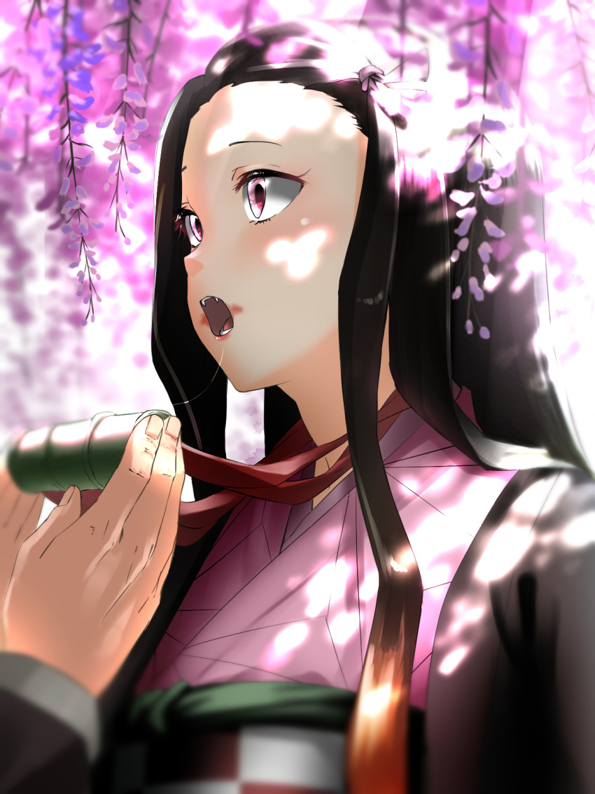 1boy 1girl bamboo bit_gag black_hair blush brother_and_sister brown_hair checkered_obi fangs gag gradient_hair hair_ribbon highres japanese_clothes kamado_nezuko kamado_tanjirou kimetsu_no_yaiba kimono long_hair long_sleeves multicolored_hair pink_kimono pink_ribbon ribbon sash shaded_face siblings solo_focus tama_(seiga46239239) very_long_hair violet_eyes