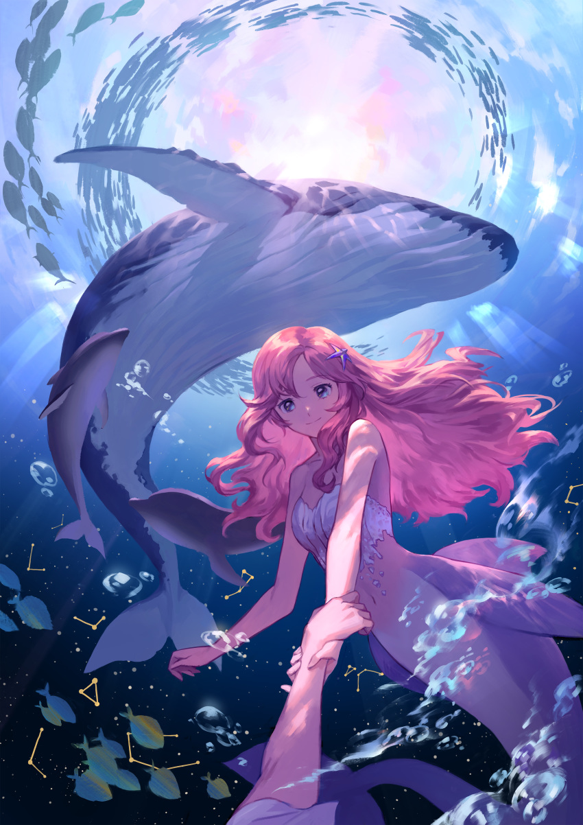1girl absurdres air_bubble arm_up bangs blue_eyes breasts bubble caustics commentary constellation day dolphin fins hair_spread_out highres holding_hands kneeless_mermaid light_rays long_hair looking_at_another mermaid monster_girl navel original out_of_frame pink_hair school_of_fish seashell shell shell_bikini short_sleeves sk_lim small_breasts smile solo_focus starfish_hair_ornament submerged underwater whale