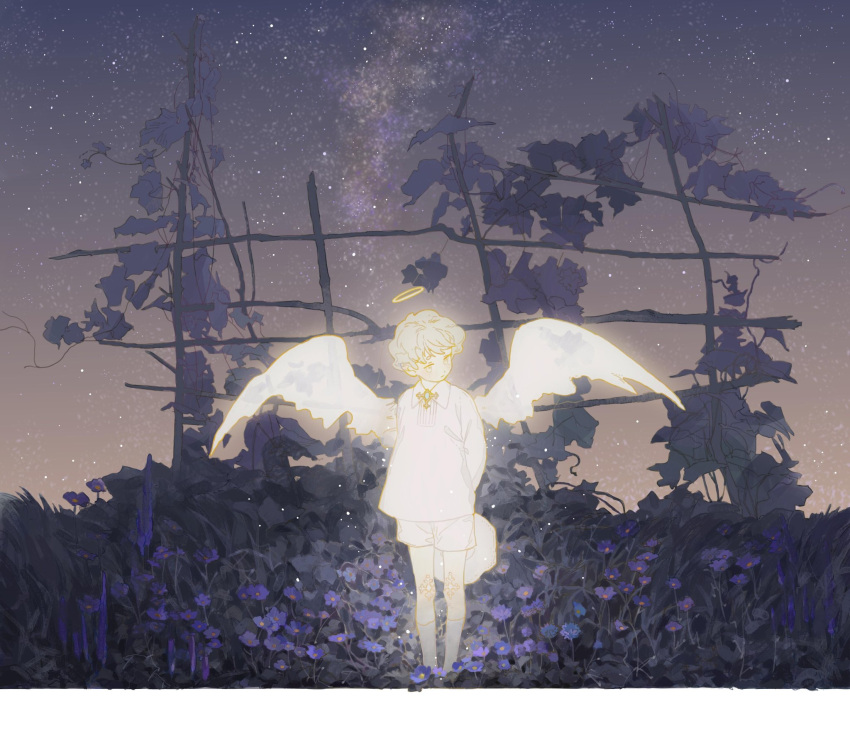 1boy arms_behind_back child closed_mouth flower halo highres kneehighs lingcod_dayu long_sleeves male_focus night night_sky original outdoors purple_flower shirt shorts sky solo standing star_(sky) wings