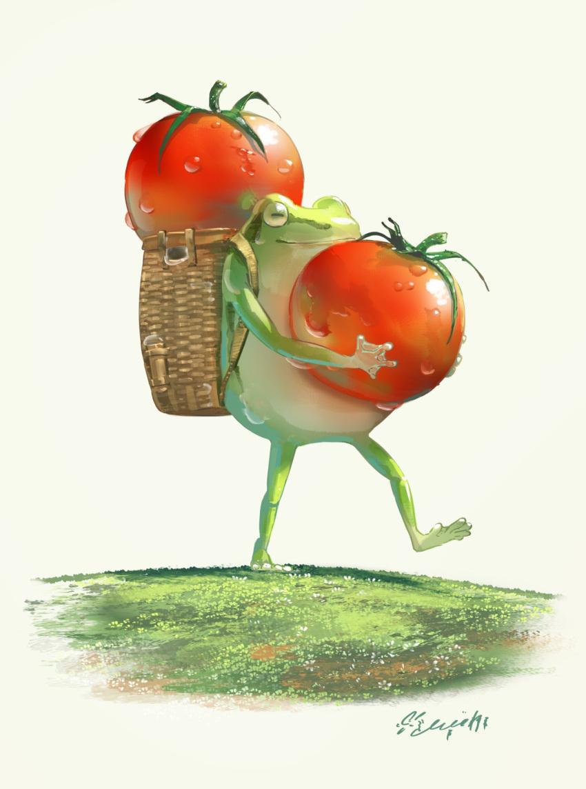 animal animal_focus backpack bag basket carrying food frog fruit full_body grass green_eyes grey_background hachiya_shohei highres holding holding_food no_humans original signature simple_background smile standing strap tomato walking wet