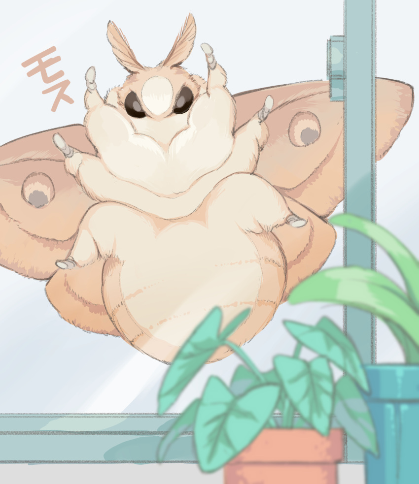 animal bug fluffy highres indoors looking_at_viewer moth no_humans ootani_eiti original oversized_animal oversized_insect plant potted_plant window