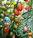 bamboo blurry carrying climbing depth_of_field falling food fruit leaf matataku minimized no_humans on_head original parachute pig plant realistic rope tomato rating:Safe score:1 user:danbooru