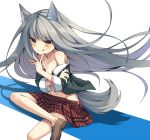 1girl :q animal_ears collarbone flat_chest grey_hair loafers long_hair navel open_clothes open_shirt original plaid plaid_skirt school_uniform shoes sitting skirt solo tail tepes tongue undressing wolf_ears wolf_tail yellow_eyes