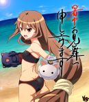 angry ass baron_(baron-eros) beach bikini brown_eyes brown_hair cat flat_chest gloves highres lens_flare long_hair looking_back ookami-san ookami_ryouko shochuumimai swimsuit very_long_hair