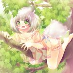 1girl animal_ears barefoot blush branch cat_ears cat_tail green_eyes grey_hair leaf nail_polish original pajamas ribbon scared short_hair solo tail tears tree