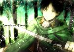 1boy angel31424 ascot black_hair brown_eyes cape rivaille shingeki_no_kyojin solo sword title_drop weapon