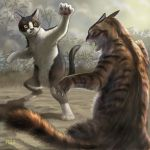 animal_ears cat cat_ears cat_tail claws fang fighting fighting_stance matataku monita_(matataku) open_mouth original posing realistic tail