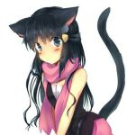 animal_ears blue_eyes blue_hair female flushed neko pokemon scarf