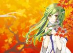 1girl autumn bare_shoulders blush detached_sleeves green_hair hair_ornament hair_tubes kochiya_sanae leaf long_hair maple_leaf mogi_(mai6334) solo touhou tumblr yellow_eyes