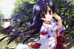 black_hair bow cobblestone hair_bow hair_ornament hair_ribbon hakama hand_on_own_cheek hand_on_own_face haori highres hoshizora_e_kakaru_hashi japanese_clothes koumoto_madoka leaf long_hair miko open_mouth outdoors perspective purple_hair ribbon ryohka ryouka_(suzuya) smile solo stairs stone_wall torii violet_eyes wall