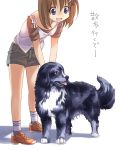 brown_hair casual dog hair_ornament hairclip kouno_hikaru mahou_shoujo_lyrical_nanoha mahou_shoujo_lyrical_nanoha_a's mahou_shoujo_lyrical_nanoha_a's shoes short_hair shorts sneakers socks striped yagami_hayate zafira