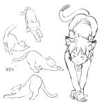 1boy animal_ears cat cat_ears cat_tail closed_eyes hands monochrome multiple_views neko_otouto original paws pointy_hair rand_(artist) shorts simple_background sketch stretch tail translation_request wavy_mouth white_background