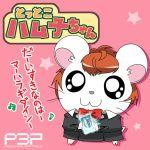 brown_hair c_(neta) female_protagonist_(persona_3) hamtaro parody persona persona_3 persona_3_portable translated translation_request