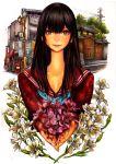 blood brown_eyes flower highres nobita school_uniform serafuku solo