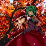 green_eyes green_hair hair_ribbon kagiyama_hina leaf leaves ribbon short_hair solo touhou umigarasu_(artist) umigarasu_(kitsune1963)