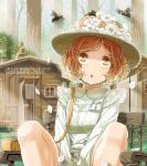 1girl arms_between_legs bag bee bench brown_eyes brown_hair buttons cabin daigoman flower forest handbag hat hat_flower lace long_sleeves looking_up meiko nature outdoors petals sakine_meiko short_hair solo translation_request tree vocaloid