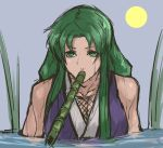 1girl bare_shoulders female ganbare_goemon green_eyes green_hair hiding highres japanese_clothes long_hair nameo_(judgemasterkou) ninja partially_submerged snorkel solo wet yae