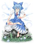 bandaid barefoot blue_eyes blue_hair bow cirno crossed_legs evil_grin evil_smile feet frog grass grin hair_bow highres ice iseki_(pixiv) mitsuharu_iseki rock sitting smile solo stone touhou wings