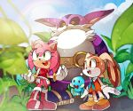 1boy 2girls amy_rose big_the_cat chao_(sonic) cheese_(sonic) cream_the_rabbit dress multiple_girls naoko_(juvenile) no_humans plant rain smile sonic_the_hedgehog wet