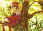 1girl :d brown_hair dress fred04142 green_eyes hat leaf looking_at_viewer open_mouth original red_dress short_hair sitting smile solo tree tree_branch