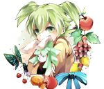 1boy bow butterfly fei_rune food fruit green_eyes green_hair inazuma_eleven_(series) inazuma_eleven_go inazuma_eleven_go_chrono_stone junekun male_focus solo stuffed_animal stuffed_bunny stuffed_toy white_background
